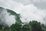 mountain and fog vintage green color - 221529645