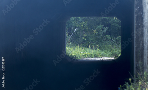 Foto Murales Beautiful tunnel over railroad tracks from green tree branches