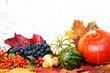 Leinwanddruck Bild - Autumn decoration, Herbst, Herbstdekoration, Herbstdeko, Kürbis, Weintrauben, Blätter, Textraum, copy space