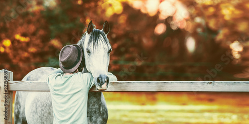 Leinwandbild Motiv Guy bumped his head in neck of horse at fence in stable on background of autumn foliage