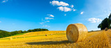 Landscape in summer with hay bales on a field and blue sky with clouds in the background - 221585485