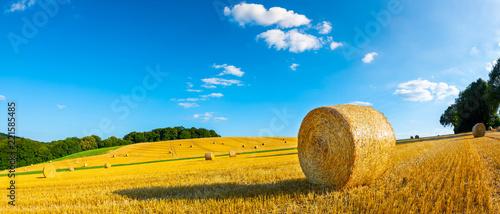 Krajobraz w lecie z siano belami na polu i niebieskim niebie z chmurami w tle