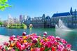 Leinwanddruck Bild - Binnenhof - Dutch Parliament with growing tulips, The Hague, Holland
