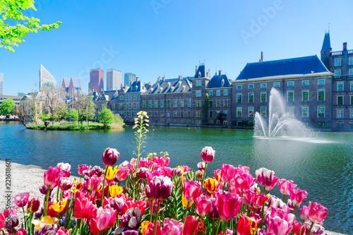 Leinwanddruck Bild Binnenhof - Dutch Parliament with growing tulips, The Hague, Holland