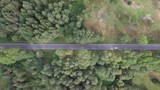 Countryside road with a single car passing, surrounded by lush green nature - Top down aerial footage - 221651414