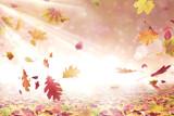 Herbst 167