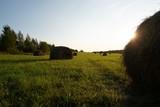 Beautiful Russian filed landscape shot - 221731688