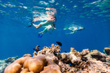 Family mother and kids snorkeling - 221740046