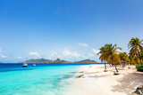 Idyllic beach at Caribbean - 221741473