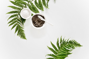 Spa background with Dead sea mud and fern leaves