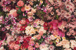 Background  with a lot of different beautiful flowers - 221750216