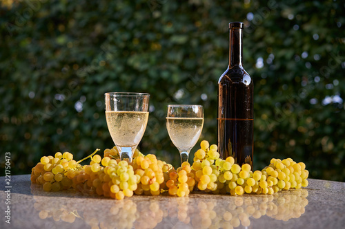 Bottle of white vine with two vintage vine glasses and fresh juicy and sweet grapes on the stone table in the garden restaurant, time of harvesting of grapes in autumn.