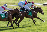 galloping race horses and jockeys competing on the race track - 221754860