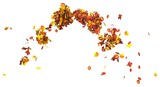Autumn leaves isolated on white background 3D illustration - 221766025