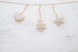 Christmas background - rustic christmas ornament hanging on white wood and copy space design.
