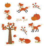 Fox set in the fall - 221786401