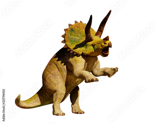 Fototapeta Triceratops horridus dinosaur in action (3d rendering isolated on white background)