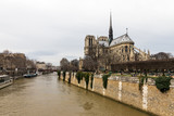 Side view of the Notre-Dame Cathedral in Paris with a moody sky - 221805097