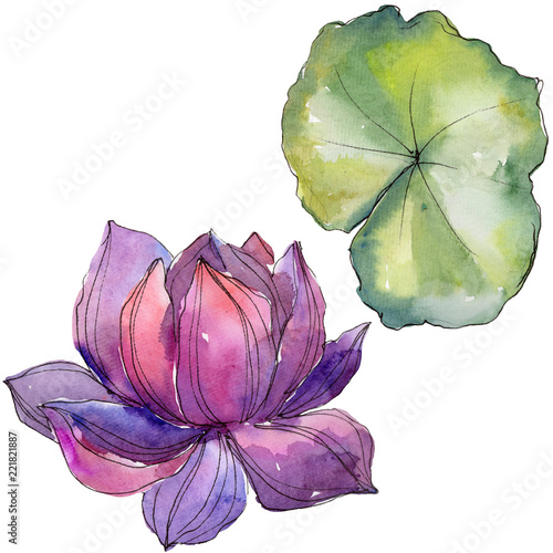 Watercolor colorful lotus flower floral botanical flower isolated watercolor colorful lotus flower floral botanical flower isolated illustration element aquarelle wildflower for mightylinksfo