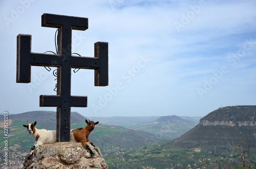 animal, montagne, vue, panorama, millau, aveyron, pouncho, tarn, vallée, croix, scout, insolite, nature, voyage, ciel, symbole,nuage, larzac