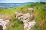 Ruins of Calamita fortress in Inkerman - 221829446