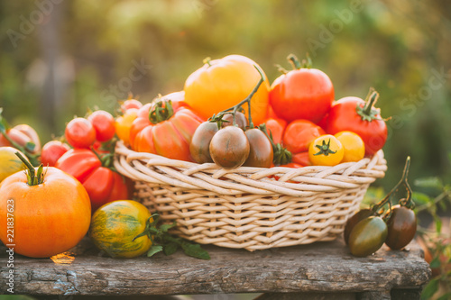 Colorful tomatoes in a basket on the old wooden table, outdoors. Selective focus - 221837623