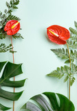 Red Anthurium flowers, fern and monstera leaves on green background. Summer mockup