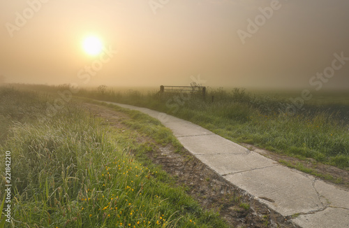 Foto Murales misty summer sunrise over road in countryside
