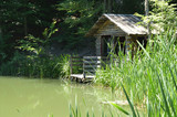 Old wooden dark house for waterfowl on the shore of a forest lake in the reserve - 221865465