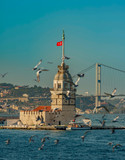 Seagulls and The Maiden's Tower and The Bosphorus Bridge on the background in Istanbul Turkey - 221870056