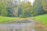 Abandoned pond in the park. - 221870280