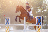 Young horse rider girl jumping over a hurdle on show jumping competition - 221881672