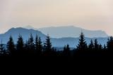 Forest Mountain Range Scene at Sunrise. Mountain panoramic landscape. - 221886204