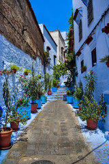 Beautiful View of Street in Chefchaouen City, Morocco © Redouane
