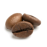 close up of two dark roasted fair trade coffee beans - 221910007