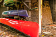 Brightly colored canoe & kayak, stored at the cottage near the winters cut wood, autumn leaves falling,