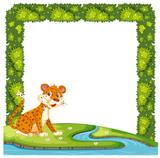 Leopard infront of bush frame - 221934002