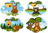 Set of bear scenes - 221934091