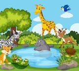 Wild animals around a pond - 221934233