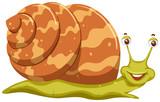 Cute orange cartoon snail