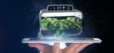 Businesmann holding a Digital vegetal plant connected - 221939030