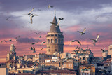 Galata Tower in Istanbul Turkey with seagulls on the foreground - 221945433