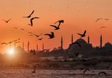 Hagia Sofia and Sultanahmet with seagulls during sunset in Istanbul Turkey - 221945436