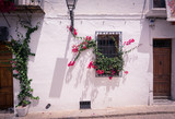 Antique window with rusty iron bars and hanging flowers in a typical mediterranean village. Altea is a mediterranean town in the heart of Costa Blanca - 221955247