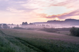French landscape - Jura. View over a flower meadow in the early morning with a light fog. - 221958248