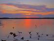 Leinwanddruck Bild - Farbenfroher Sonnenuntergang,Waren Müritz
