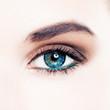 Perfect female eye with makeup, macro