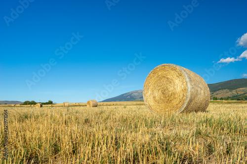Foto Murales balas de pasto para el ganado, Cataluña, España