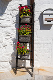flowers stairs