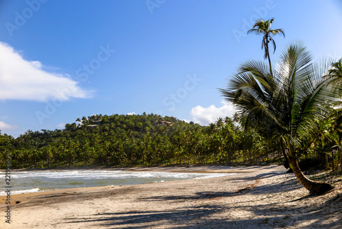 Beach paradise with coconut palms, rocks, sand and warm water, Itacare, Bahia, Brazil